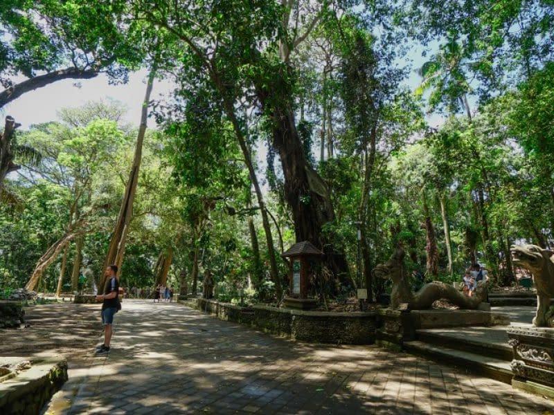 Sacred Monkey Forest Sanctuary Ubud (1)