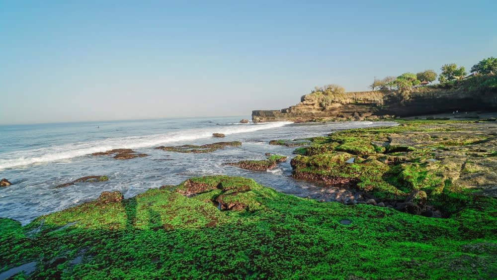 Tanah Lot Temple Top Rated Tourist Attractions in Bali (7)
